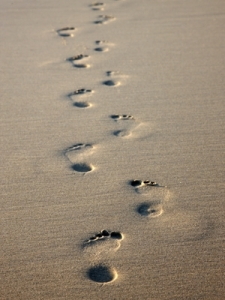 footprints II